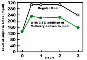 About Mulberry